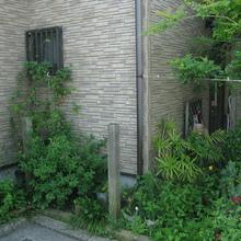 松山市:松山市ではタンクの設置に補助金が交付される雨水貯水タンクの設置